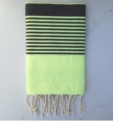 arthur fluo and anthracite beach towel