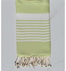light green arthur beach towel