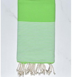Beach Towel absinthe green