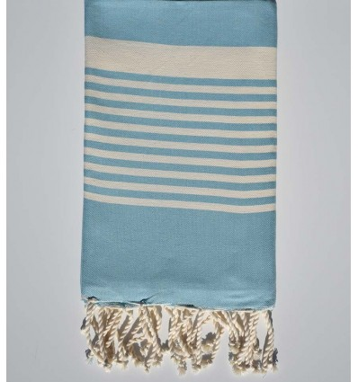 Air superiority blue arthur beach towel